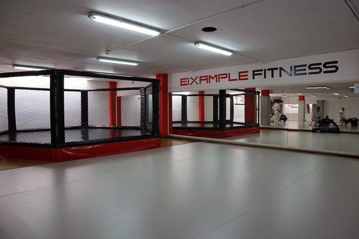 Jaula de MMA Xfit Eixample