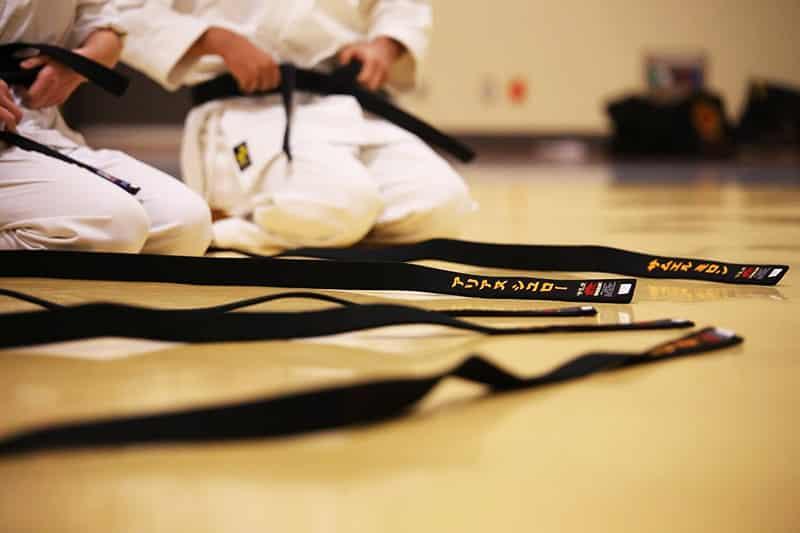 Karate-Do: El Camino de la Mano Vacía
