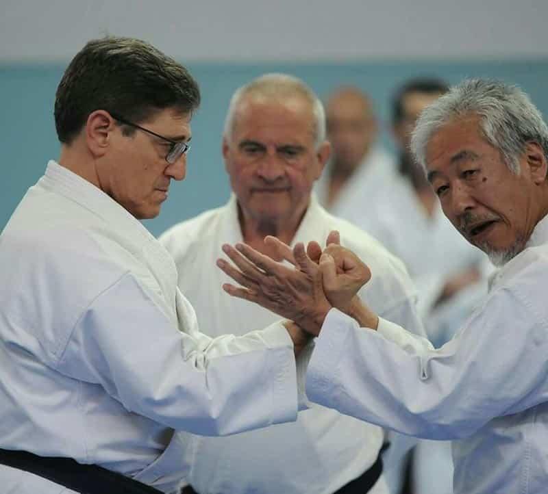 Karate-Do: El Camino de la Mano Vacía (tercera parte)