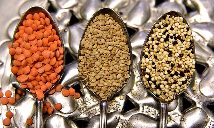 micronutrientes nutricion