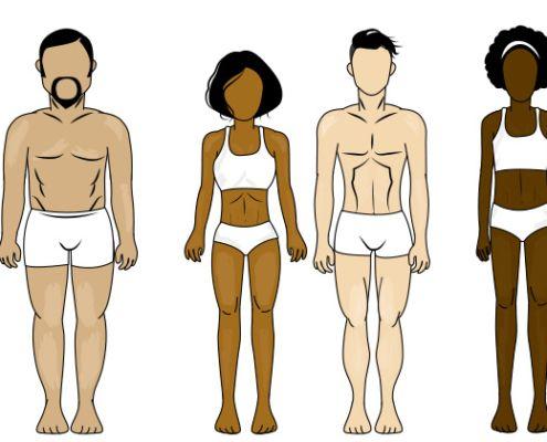 Tipo de cuerpo: Conoce más sobre tu cuerpo