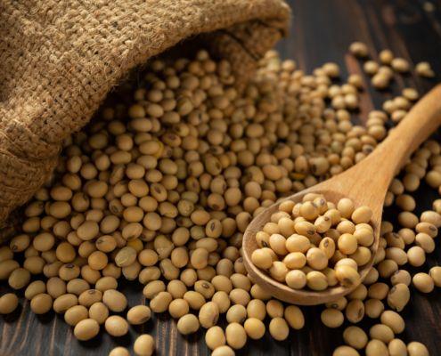 Proteína vegetal: 3 alimentos importantes para nuestra salud